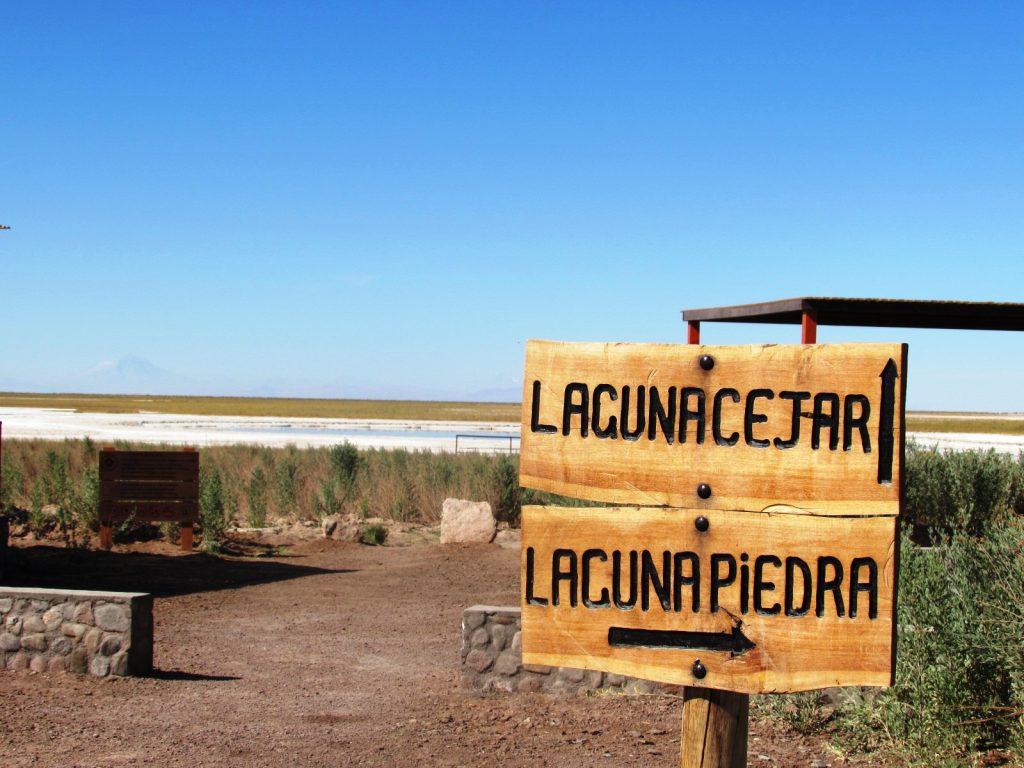 laguna15